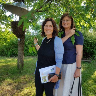 Kerstin Celina, MdL und Karen Heußner, stellv. Landrätin im Landkreis Würzburg, an einem frei hängenden Bienenvolk.
